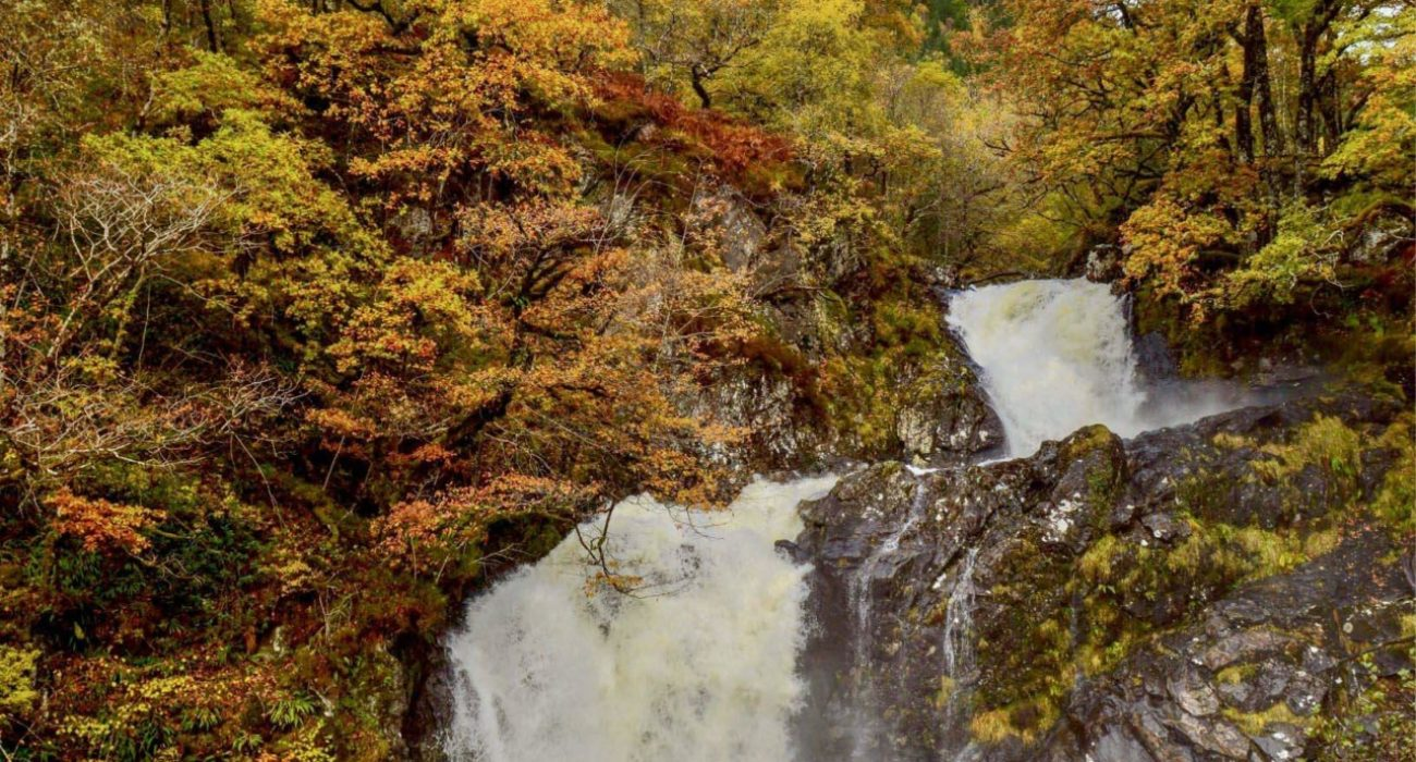 eas-chia-aig-waterfall (1)